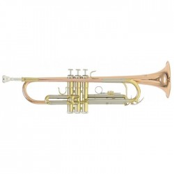Trompeta ROY BENSON TR 202G