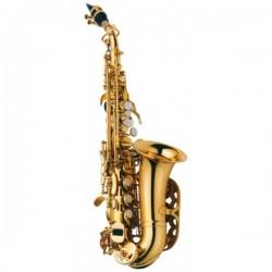 Saxo soprano J. MICHAEL 700