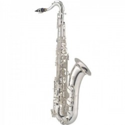 Saxo tenor J. MICHAEL 1100S