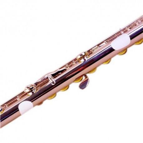 Protector de Flauta Bg A15